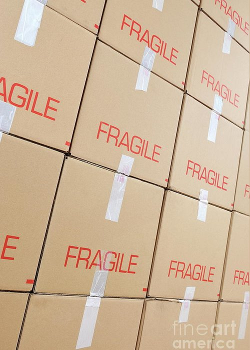 Conformity Greeting Card featuring the photograph Stacks Of Cardboard Boxes Marked 'fragile' by Sami Sarkis