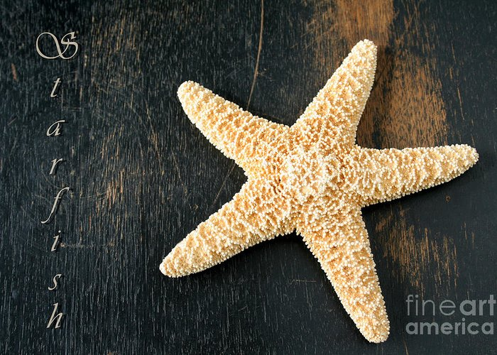 Animal Greeting Card featuring the photograph Starfish by Darren Fisher