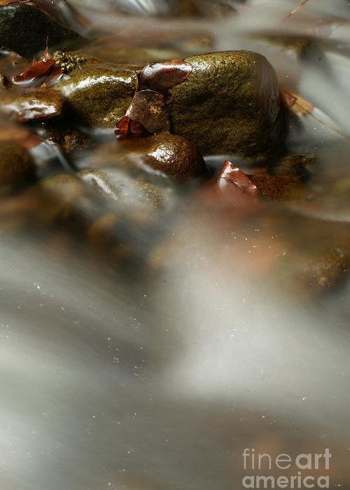 Nature Greeting Card featuring the photograph Stones In River by Odon Czintos