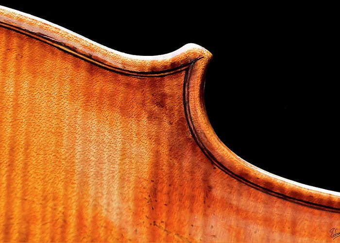 Strad Greeting Card featuring the photograph Stradivarius Back Corner by Endre Balogh