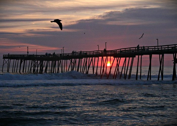 Sunrise Greeting Card featuring the photograph Sunrise At Avalon Pier by Andrea Stuart-Bishop