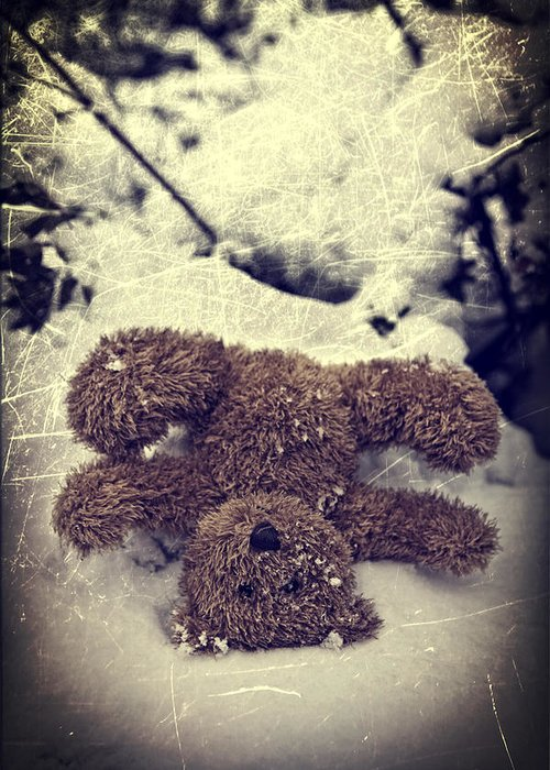 Teddy Greeting Card featuring the photograph Teddy In Snow by Joana Kruse