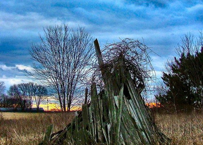 Woodstacks Greeting Card featuring the photograph The Woodstack by Julie Dant