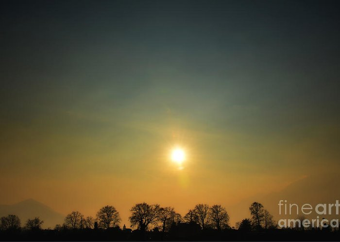 Tree Greeting Card featuring the photograph Trees And Sun In A Foggy Day by Mats Silvan