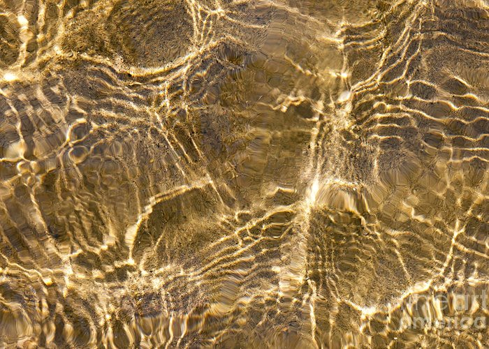 Water Greeting Card featuring the photograph Water And Sand Ripples by Elena Elisseeva