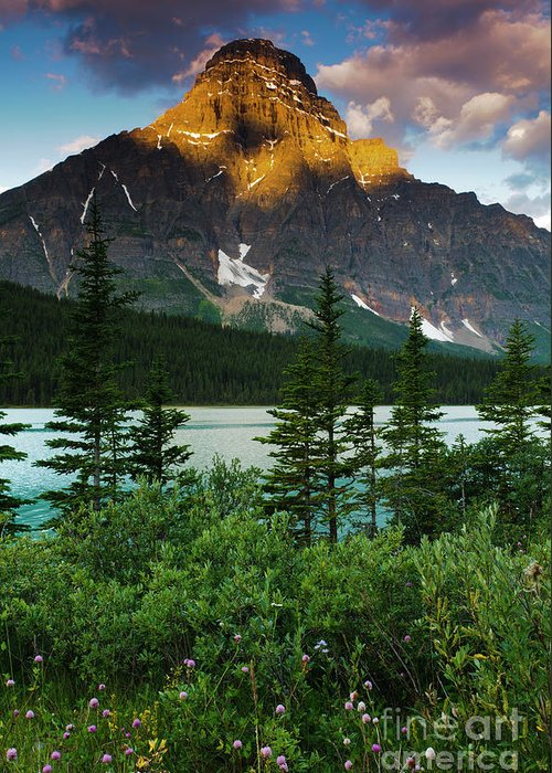 Alberta Greeting Card featuring the photograph Waterfowl Lake by Ginevre Smith