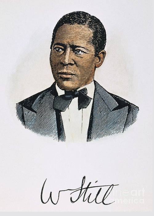 19th Century Greeting Card featuring the photograph William Still (1821-1902) by Granger
