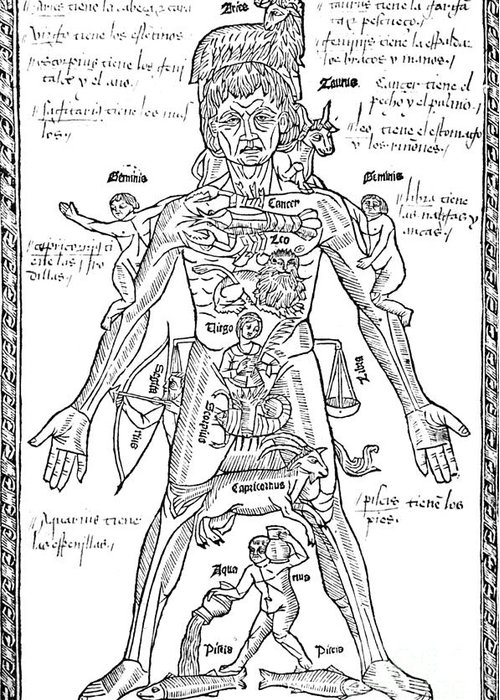 Science Greeting Card featuring the Zodiac Man, Medical Astrology by Science Source