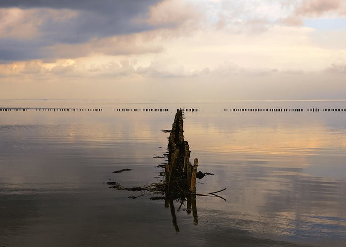 Wadden Sea Greeting Card featuring the photograph Kampen - Sylt by Joana Kruse