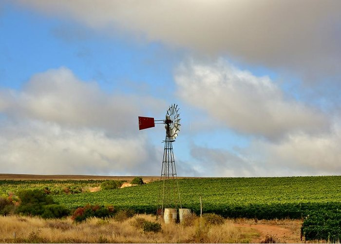 Water Pump; Windmill; Blue; Summer; Warm; Wind; Sky; Grass; Brown; Dry; Westcoast; South Africa; Landscape; Nature; Wine; Field; Grapes; Red; Silver; Background; Decorative; Greeting Card featuring the photograph Water Pump Windmill by Werner Lehmann