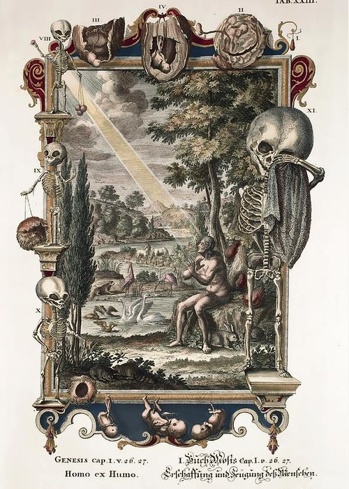18th Century Greeting Card featuring the photograph 1731 Johann Scheuchzer Creation Of Man by Paul D Stewart