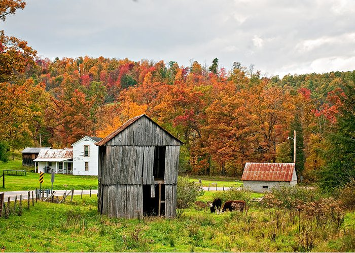 West Virginia Greeting Card featuring the photograph Autumn Farm by Steve Harrington