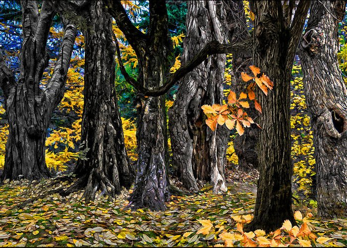 Landscape Greeting Card featuring the photograph Autumn Landscape by Vladimir Kholostykh