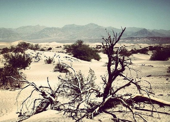 Beautiful Greeting Card featuring the photograph Death Valley by Luisa Azzolini