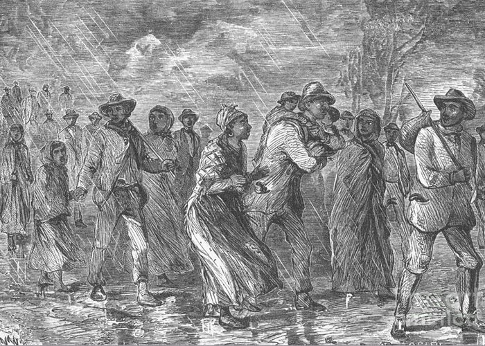 Slavery Greeting Card featuring the photograph Escaping To Underground Railroad by Photo Researchers