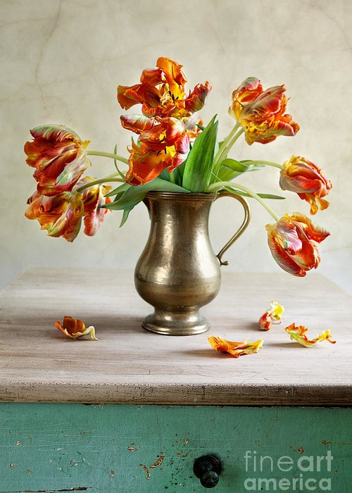 Spring Bulbs Greeting Cards