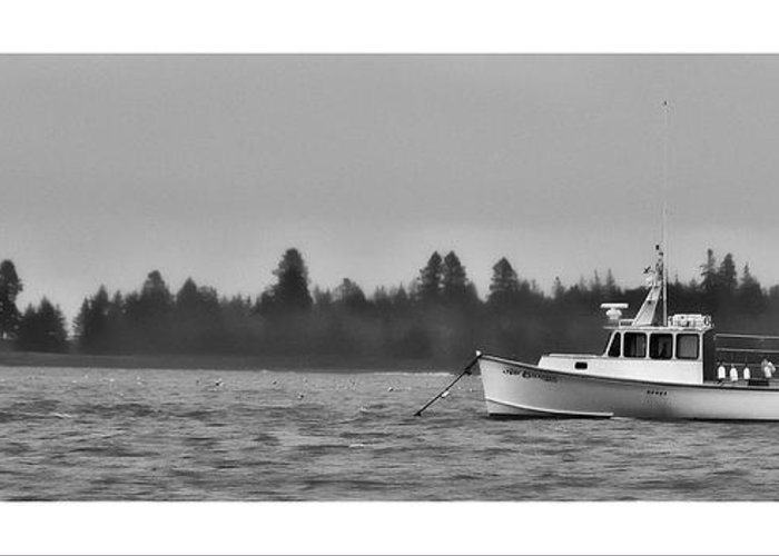 Bay Greeting Card featuring the photograph Subtle Mooring by Richard Bean