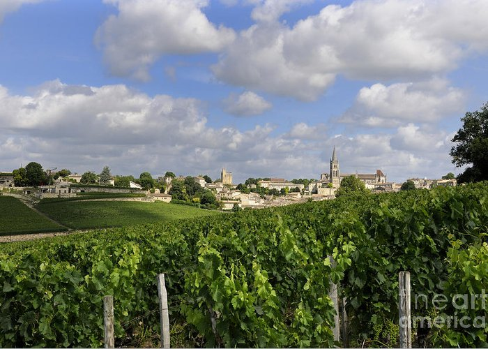 Winegrowing Greeting Card featuring the photograph Village And Vineyard Of Saint-emilion. Gironde. France by Bernard Jaubert