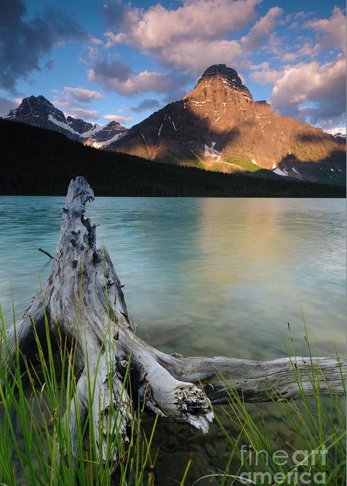 Waterfowl Lake Greeting Card featuring the photograph Waterfowl Lake by Ginevre Smith