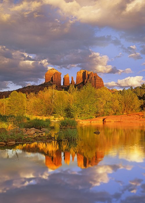 00175721 Greeting Card featuring the photograph Cathedral Rock Reflected In Oak Creek by Tim Fitzharris