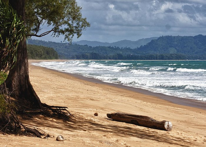 Deserted Beach Greeting Card featuring the photograph Deserted Beach In Phuket In Thailand by Zoe Ferrie