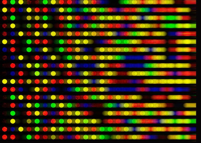 Microarray Greeting Card featuring the photograph Dna Microarray by Pasieka