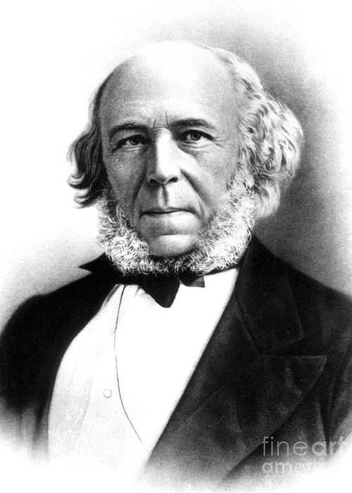 Science Greeting Card featuring the photograph Herbert Spencer, English Polymath by Science Source