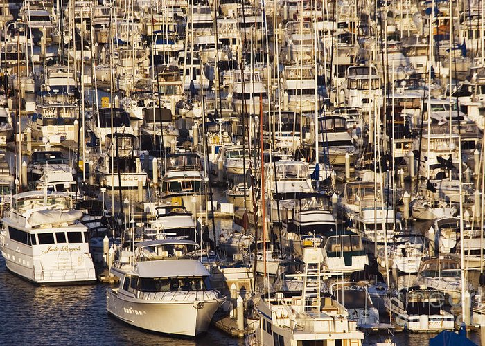 Anchored Greeting Card featuring the photograph Marina by Jeremy Woodhouse
