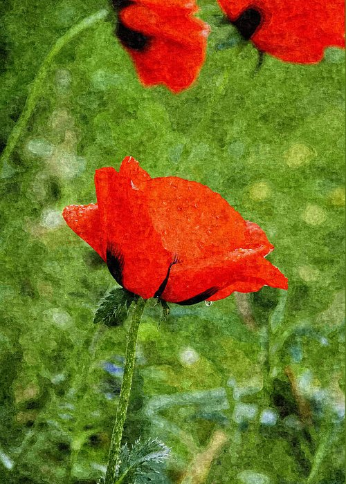 Painting Greeting Card featuring the digital art Poppy by Design Windmill