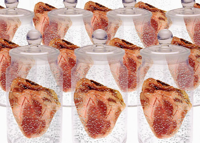 Body Parts Greeting Card featuring the photograph Spare Hearts by Victor De Schwanberg