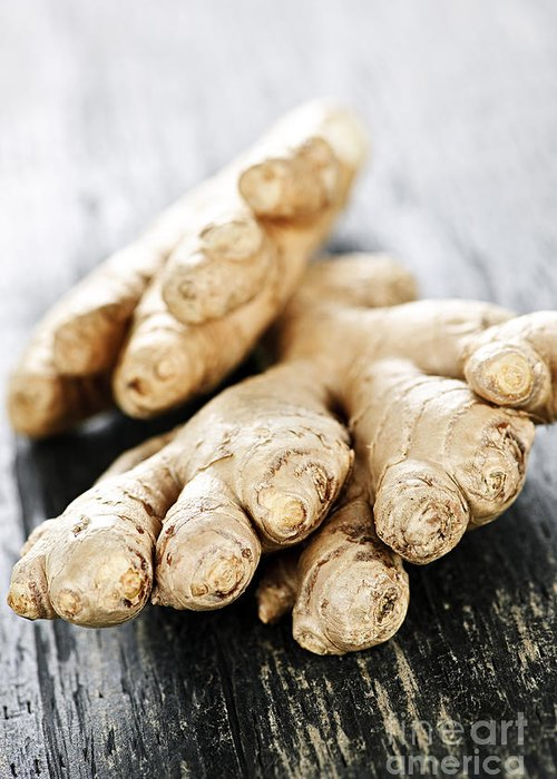 Ginger Greeting Card featuring the photograph Ginger Root by Elena Elisseeva