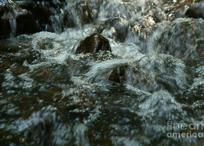 Nature Greeting Card featuring the photograph River by Odon Czintos