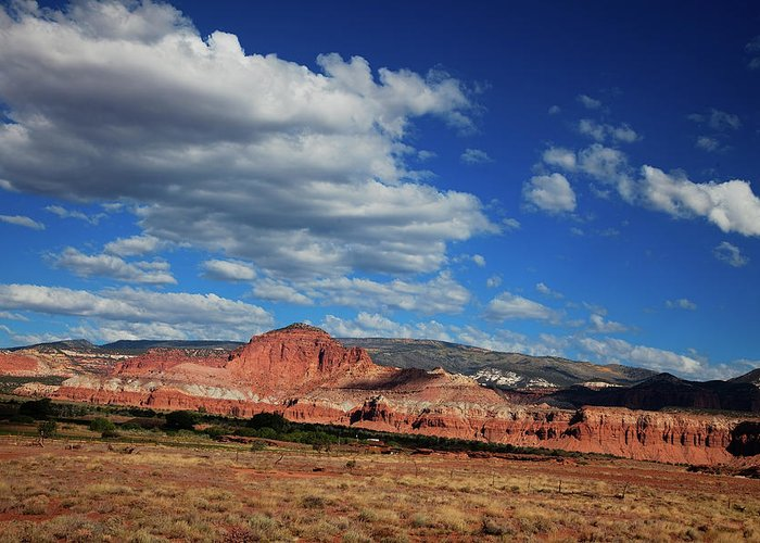 Southern Utah Greeting Card featuring the photograph Capitol Reef National Park by Southern Utah Photography