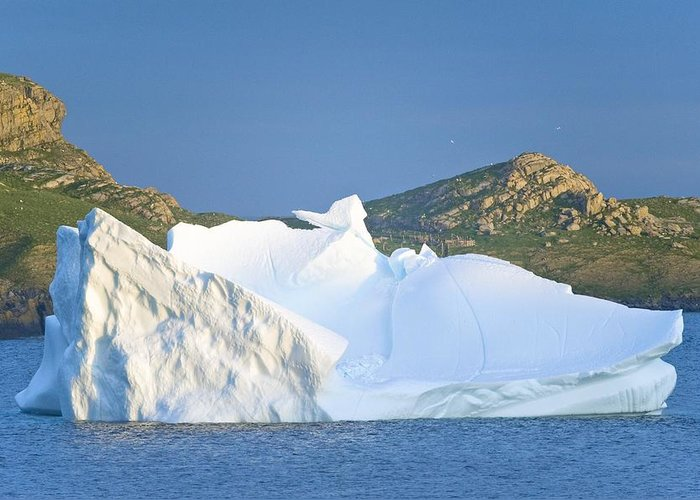 Ice Greeting Card featuring the photograph Iceberg, Canada by David Nunuk