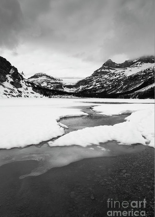 Alberta Greeting Card featuring the photograph Bow Lake by Ginevre Smith