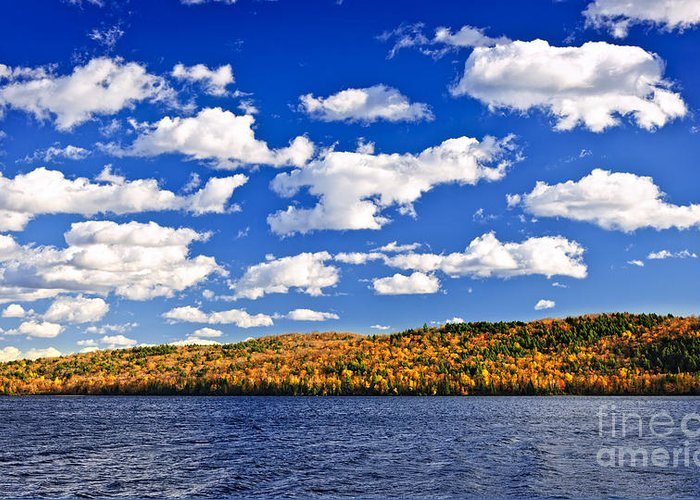 Autumn Greeting Card featuring the photograph Fall Forest And Lake by Elena Elisseeva