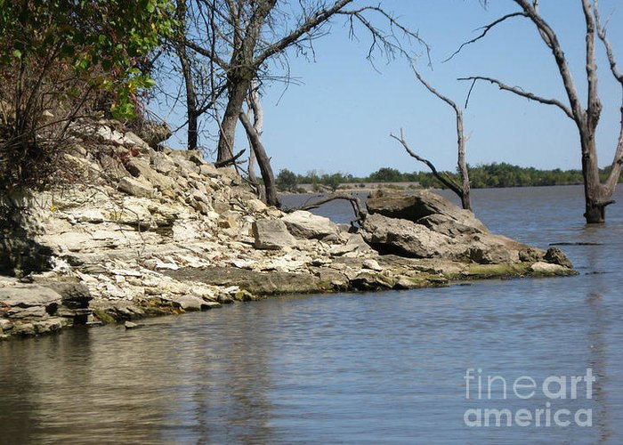 Greeting Card featuring the photograph A Day At The Lake by Teresa Carvell