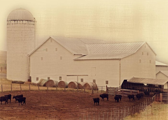 Farm Greeting Card featuring the photograph A Farm Somewhere by Kathy Jennings
