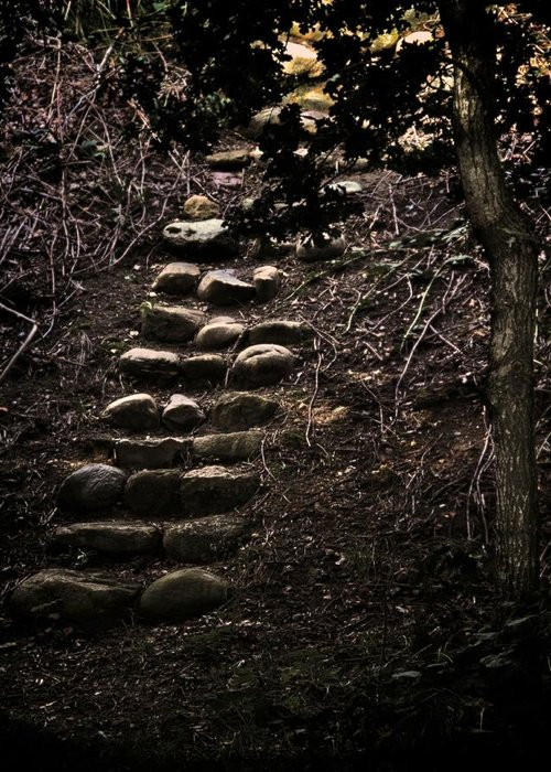 Steps Greeting Card featuring the photograph A Few More Steps by Odd Jeppesen