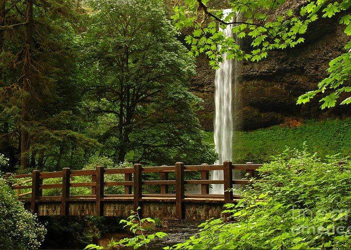South Falls Greeting Card featuring the photograph A Hidden Gem by Vivian Christopher