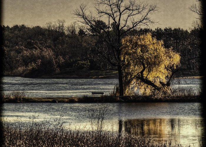 Lake Greeting Card featuring the photograph A Place To Think by Thomas Young