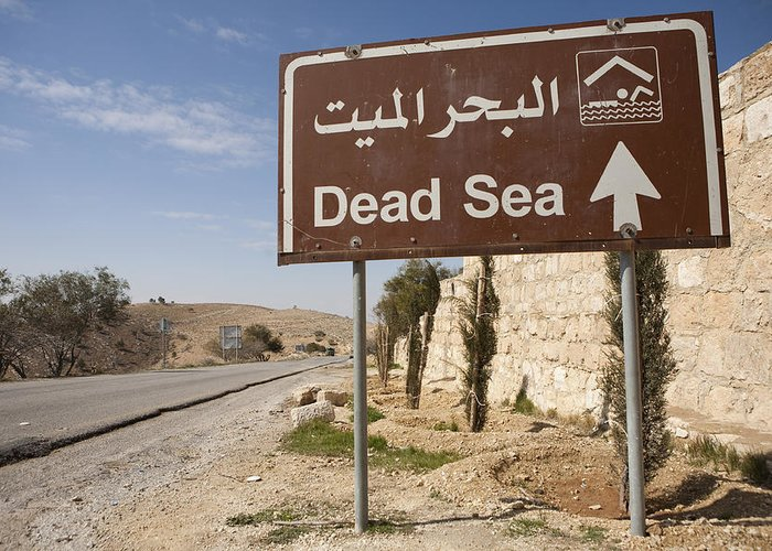 Jordan Greeting Card featuring the photograph A Road Sign In Both Arabic And English by Taylor S. Kennedy