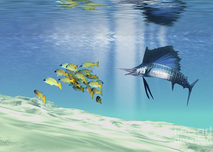 Animal Greeting Card featuring the digital art A Sailfish Hunts Prey On A Sandy Reef by Corey Ford
