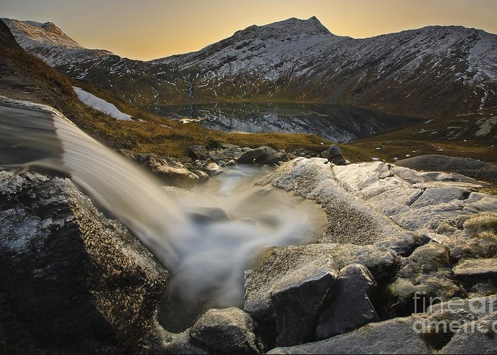 Golden Greeting Card featuring the photograph A Small Creek Running by Arild Heitmann