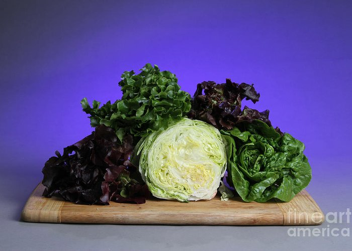 Lettuce Greeting Card featuring the photograph A Variety Of Lettuce by Photo Researchers, Inc.