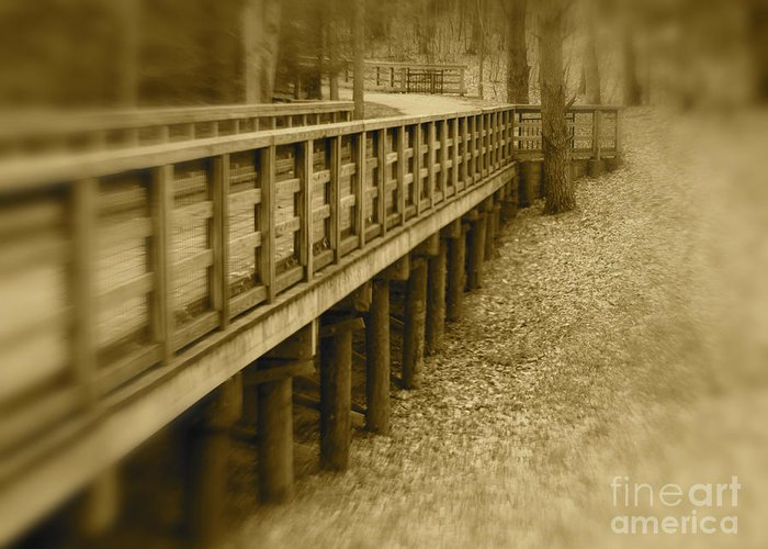 Walk Greeting Card featuring the photograph A Walk In Time by Cheryl Butler