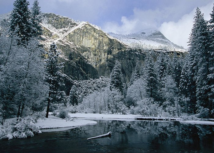 North America Greeting Card featuring the photograph A Winter View Of The Merced River by Marc Moritsch