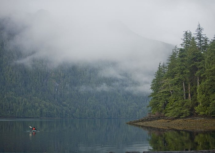 Queen Charlotte Islands Greeting Card featuring the photograph A Woman Kayaks Along A Quiet Inlet by Taylor S. Kennedy