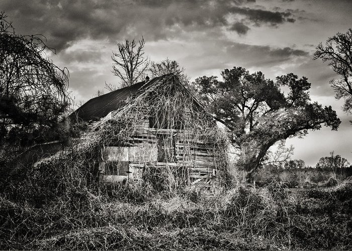 Barn Greeting Card featuring the photograph Abandoned Barn 2 by Brenda Bryant