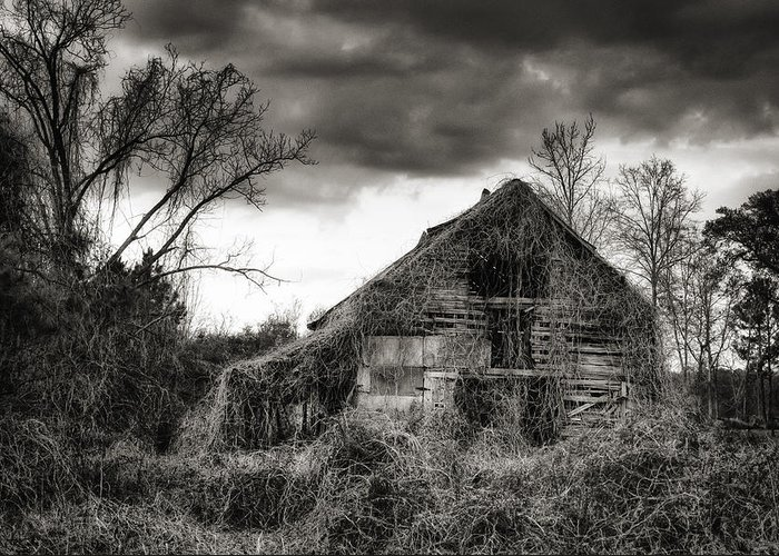 Barn Greeting Card featuring the photograph Abandoned Barn by Brenda Bryant